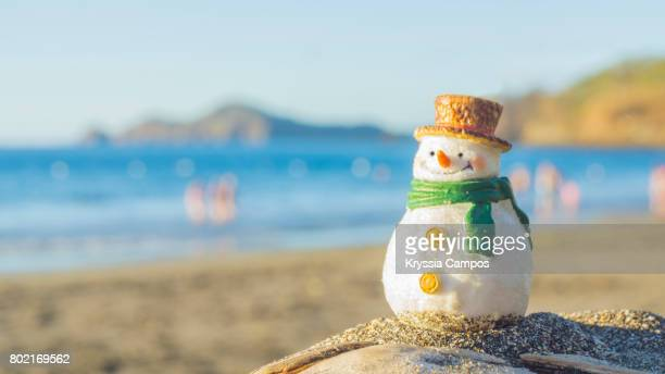 snowman at beach vacations in costa rica - bonhomme de neige photos et images de collection