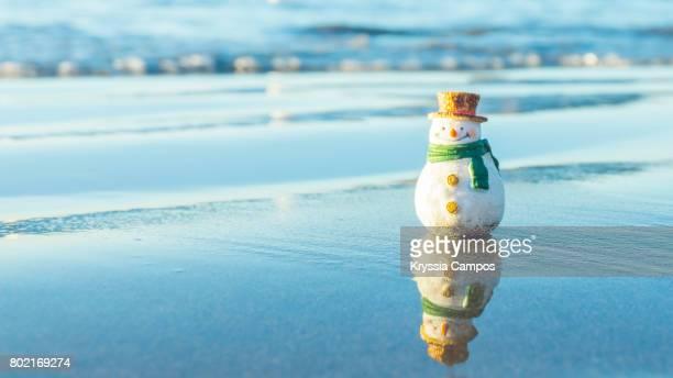 Snowman at Tropical Beach Vacations