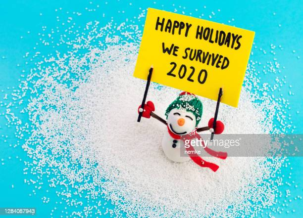 snowman holding banner with message happy holidays we survived 2020 - funny christmas stock pictures, royalty-free photos & images
