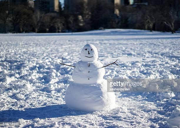 snowman in field - bonhomme de neige photos et images de collection