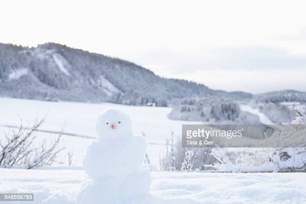 Snowman in snow-covered landscape, Trondheim, Norway
