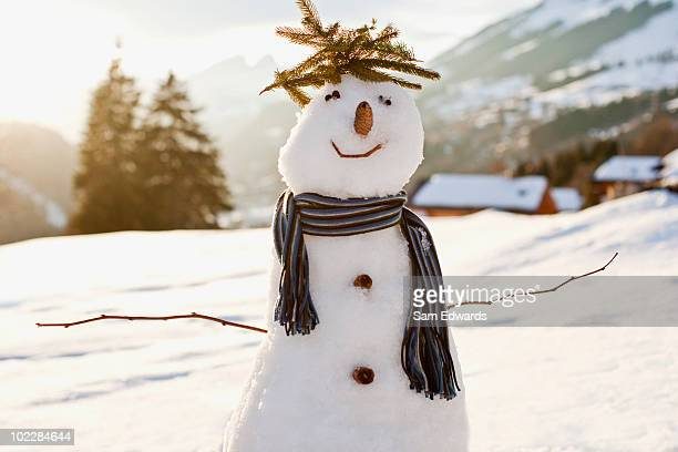 Snowman in snowy field