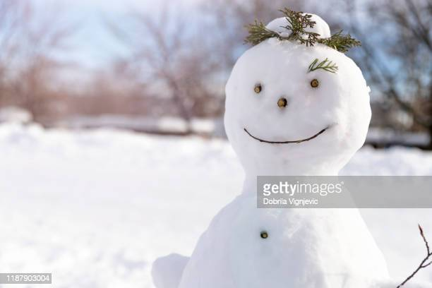 snowman in snowy field - snowman stock pictures, royalty-free photos & images