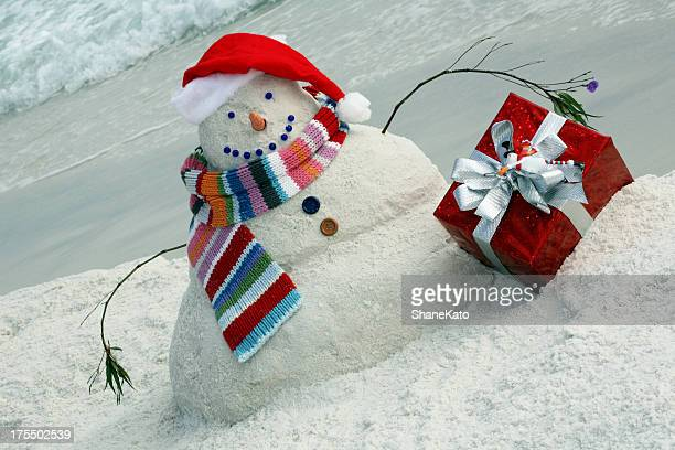 Christmas In Florida Images.World S Best Florida Christmas Stock Pictures Photos And