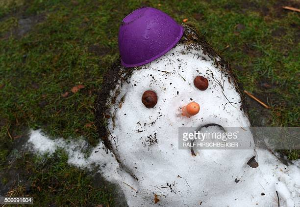 A snowman on a meadow near Potsdam Germany melts away on January 25 2016 at temperatures above freezing / AFP / dpa / Ralf Hirschberger / Germany OUT