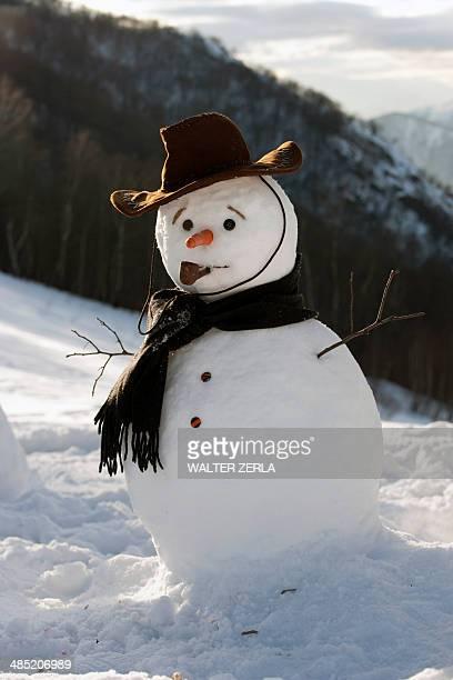 snowman on mountainside wearing hat and scarf - bonhomme de neige photos et images de collection