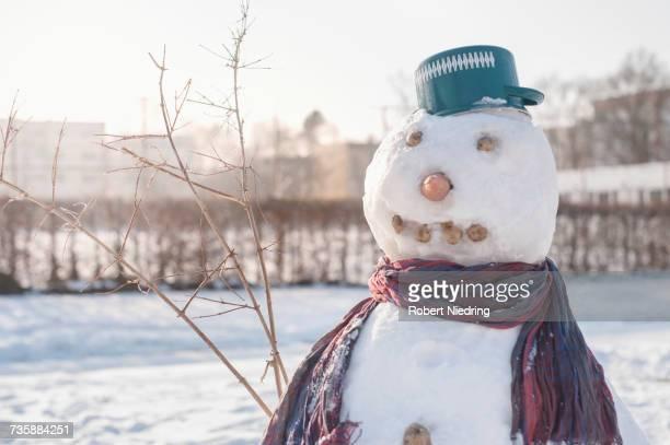 Snowman on snow field
