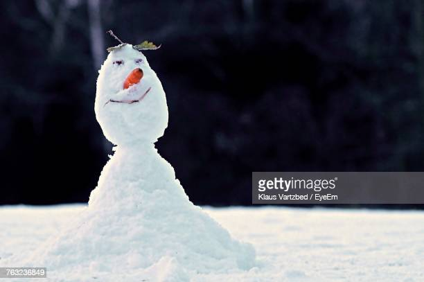 Snowman On Snowfield