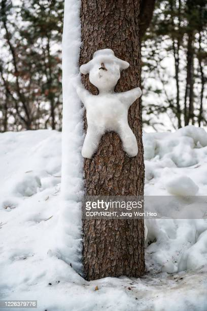 snowman on the tree - gangwon province stock pictures, royalty-free photos & images