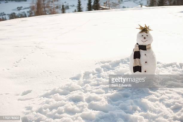 bonhomme de neige - bonhomme de neige photos et images de collection