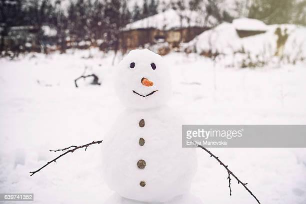 snowman - bonhomme de neige photos et images de collection