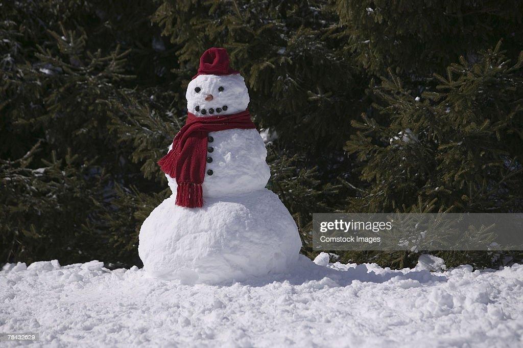 Snowman : Stockfoto