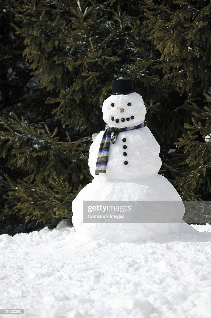 Snowman : Foto de stock