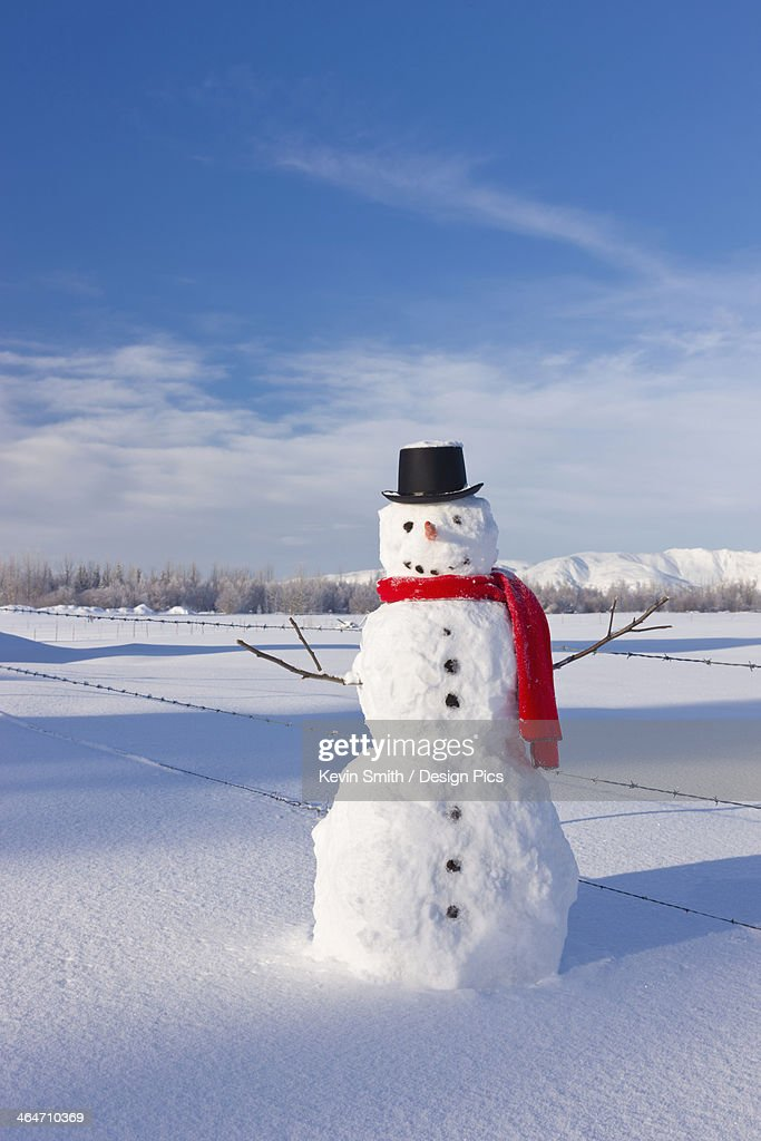 Snowman Wearing A Red Scarf And Black Top Hat Standing In Fresh Snow On A Sunny Day : ストックフォト