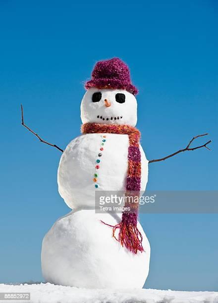snowman wearing hat and scarf, clear sky in background - bonhomme de neige photos et images de collection