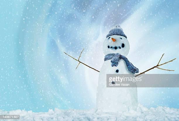 snowman with arms open - bonhomme de neige photos et images de collection