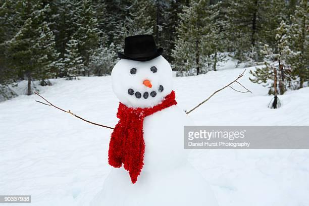 snowman with arms out - bonhomme de neige photos et images de collection