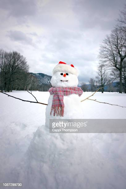 Snowman with scarf, carrot nose, and Christmas style Santa Hat