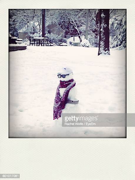 snowman with scarf on snow covered field - rachel wolfe stock pictures, royalty-free photos & images