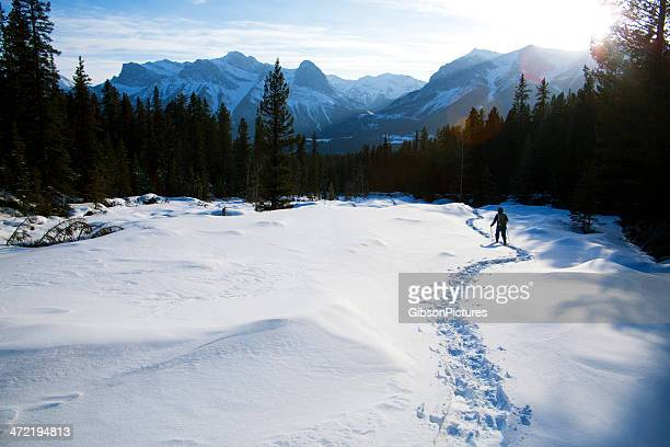 snowshoe in the sun - track imprint stock photos and pictures