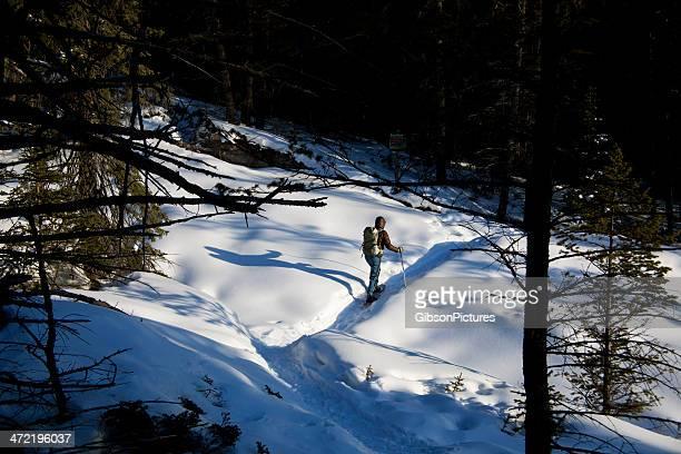 Raquette à neige au soleil