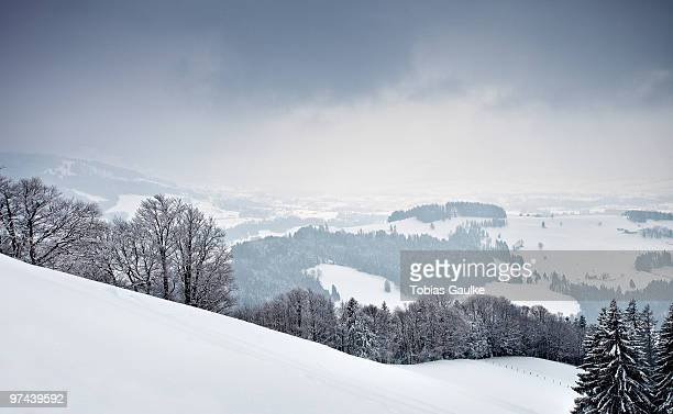 Snowshoeing hike tour