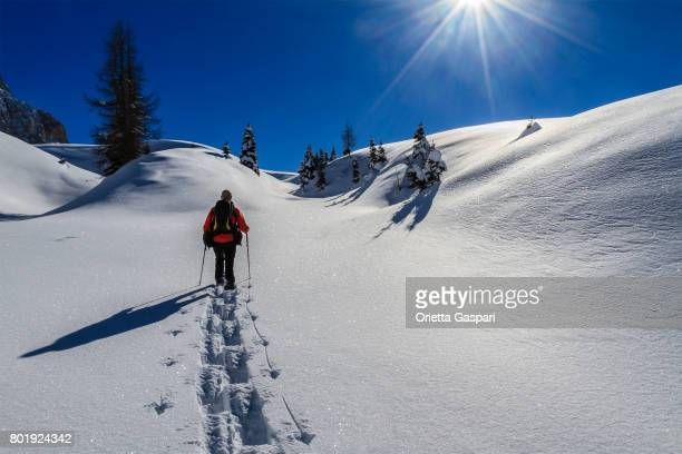 Snowshoeing in the Pale di San Martino Natural Park in winter, Italy