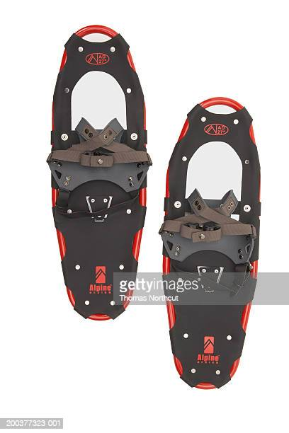 Snowshoes, overhead view