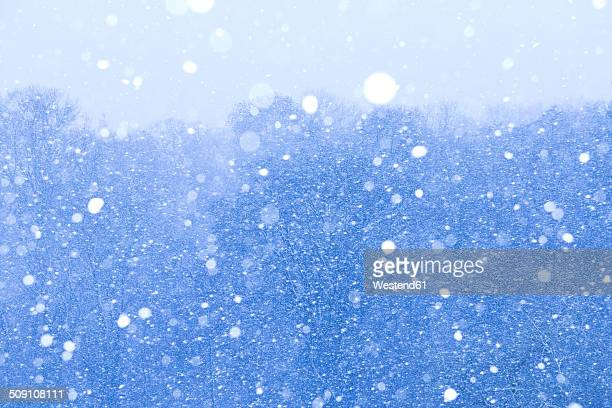 snowstorm - winter weather stock photos and pictures