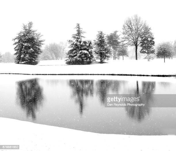 snow,trees,and water as art - mere noel stock pictures, royalty-free photos & images