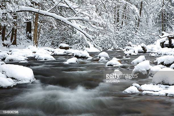 snowy appalachian mountain stream - great smoky mountains stock pictures, royalty-free photos & images