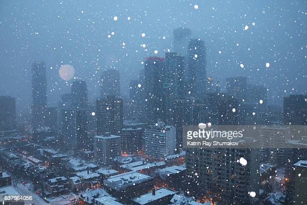 Snowy Blue Hour on Toronto Cityscapes