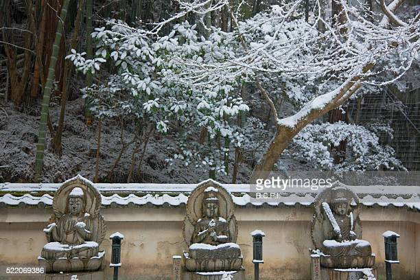 snowy buddha statues at tanukidani fudo-in temple in kyoto, japan - shingon buddhismus stock-fotos und bilder