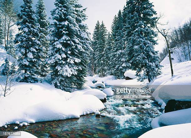 snowy cascade creek in lake tahoe, california - lake tahoe stock photos and pictures