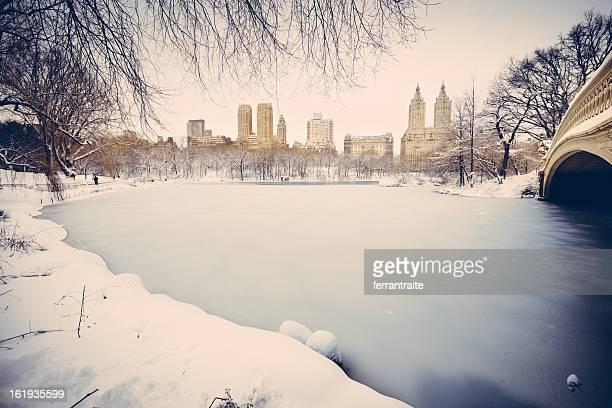 Snowy Central Park New York