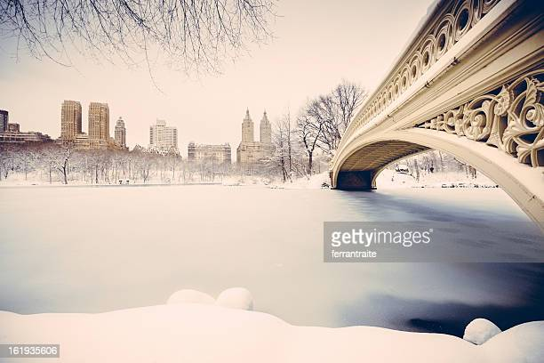 Snowy Central Park New York