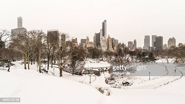 Snowy Central Park - New York