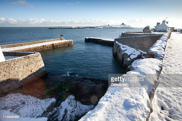 snowy colliemore - dalkey stock pictures, royalty-free photos & images