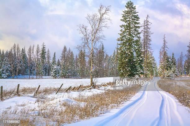 snowy country lane dans la campagne du nord de l'Idaho