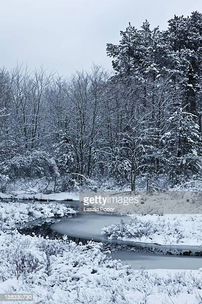 snowy creek - bedford nova scotia stock pictures, royalty-free photos & images