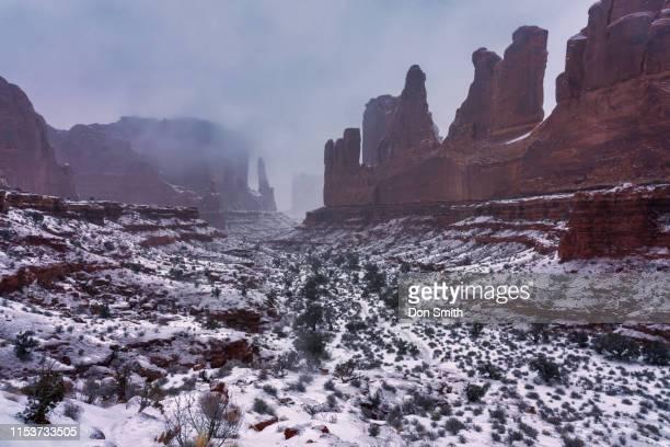 snowy day, park avenue, arches national park - don smith stock-fotos und bilder