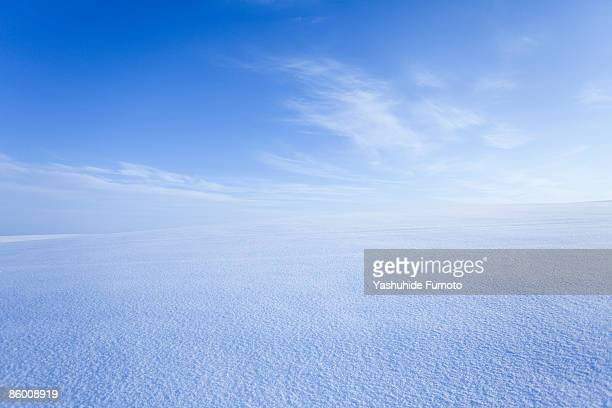 snowy field. - horizon over land stockfoto's en -beelden