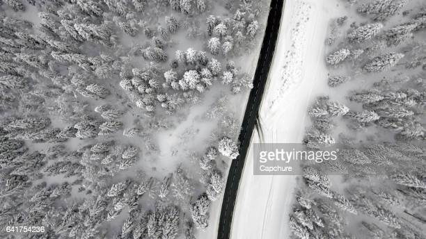 Snowy Forest and Aerial Views over an Alpine forest Vattay