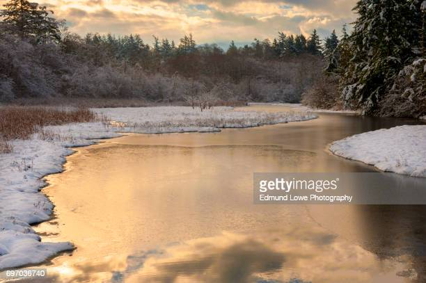 Snowy Island Wetland at Sunset