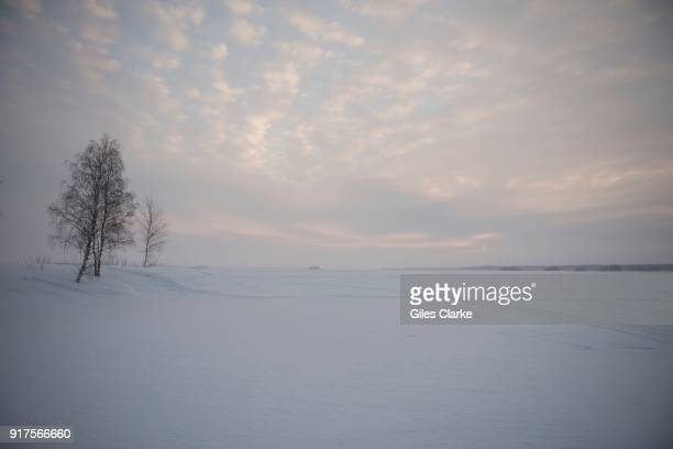 Snowy landscape near the Arctic Circle