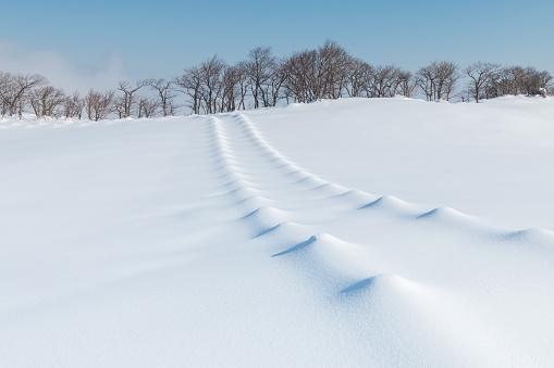 Snowy Landscape of Hwangbyeongsan Mountain, Gangwon-do Province, South Korea - gettyimageskorea