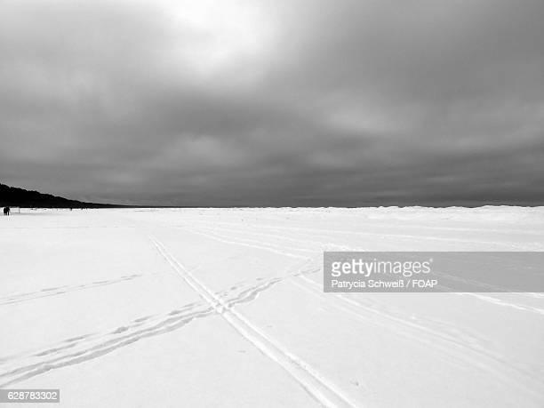 Snowy landscape of Latvia