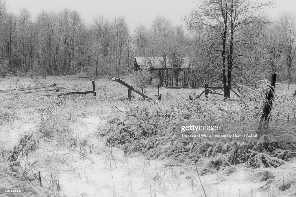 Snowy landscape : Foto de stock