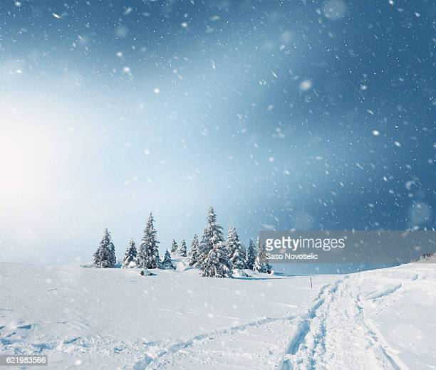 snowy landscape - horizontal stock pictures, royalty-free photos & images