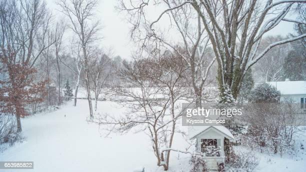 snowy landscape - schneebedeckt stock-fotos und bilder
